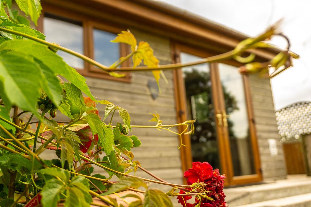 Swansea Log Cabin - Holiday Home